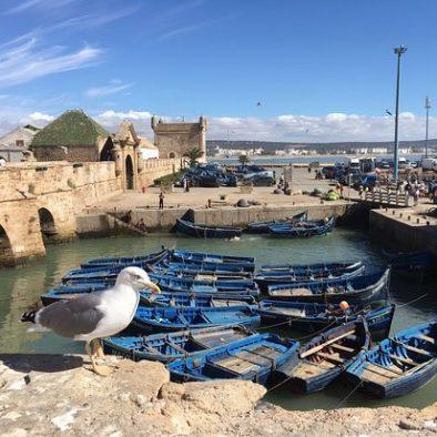 Essaouira day tours
